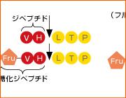 グリコヘモグロビンA1c(HbA1c)測定用試薬「メタボリード® HbA1c」のご紹介