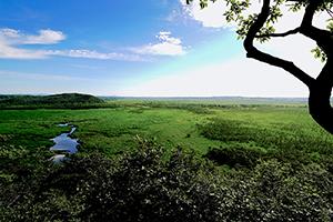 北海道釧路市 釧路湿原国立公園 コッタロ湿原