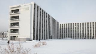 北海道大学 電子科学研究所 「知性」とは何か。単細胞生物にそのメカニズムを探る。